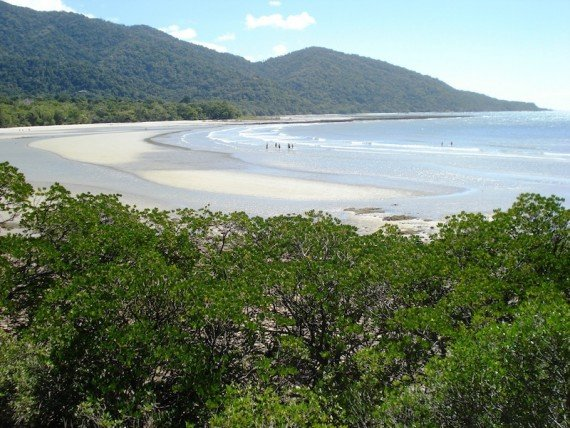 Cape Tribulation viaggio in Australia