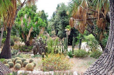 Giardini Hanbury