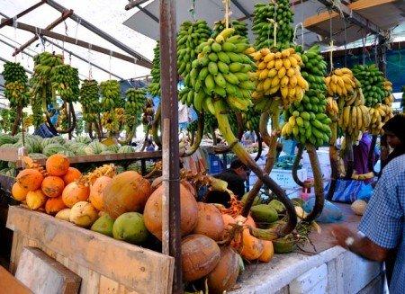 Mercato della frutta a Male