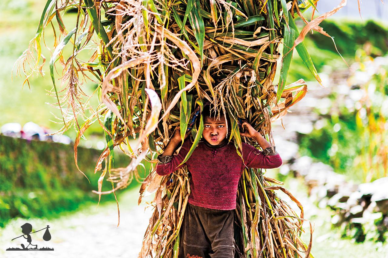 trekking Himalaya - viaggio in Nepal