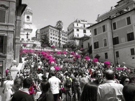 le azalee di piazza di spagna, roma