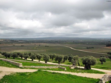 Masseria Amastuola Puglia