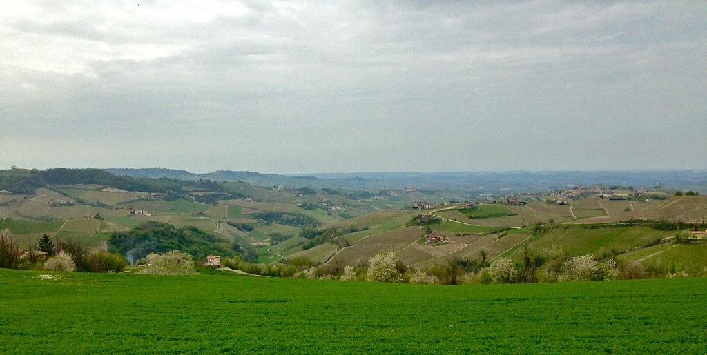 Langhe, Piemonte