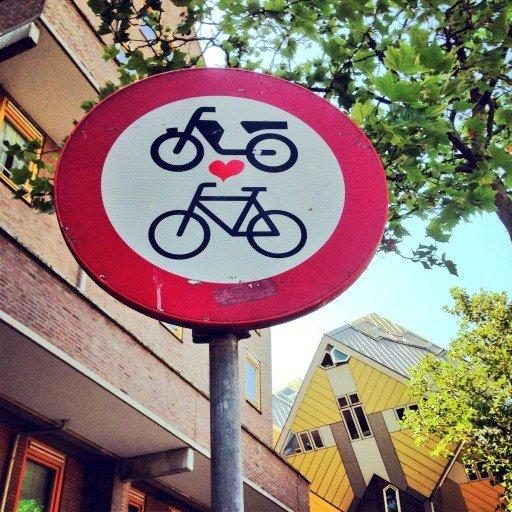 In bici per Rotterdam
