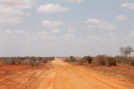 tsavo est national park - safari in kenya