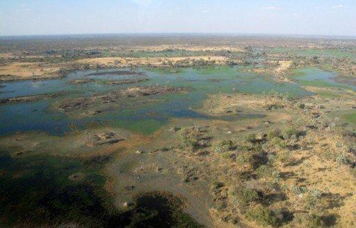 okavango, botswana, safari, Africa