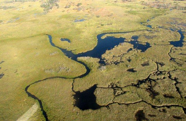 Botswana, Africa, Safari, Okavango