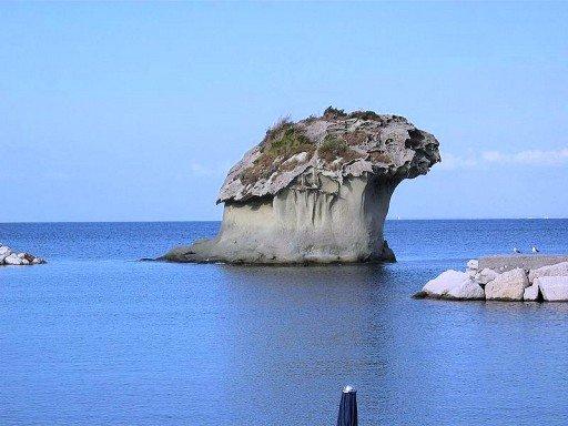 il-fungo-ischia