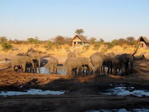 Elefanti, Elephant Sands
