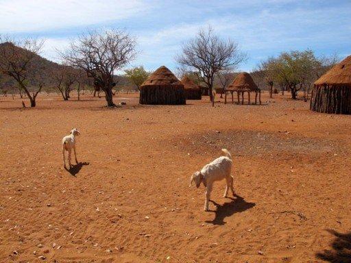 Villaggio Himba, Namibia