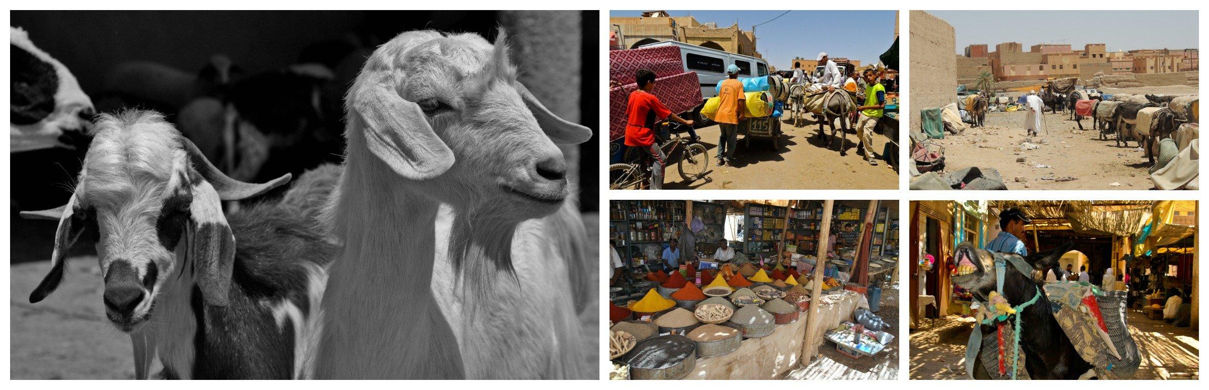 Escursione nel deserto, villaggio di Rissani
