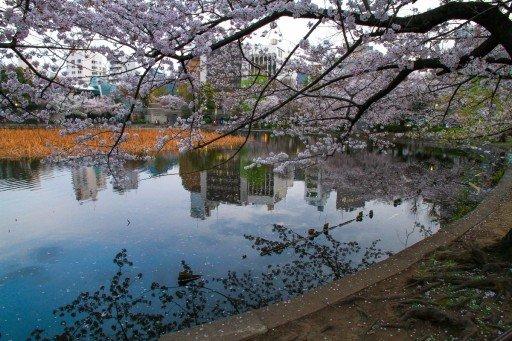 Ueno - Tokyo