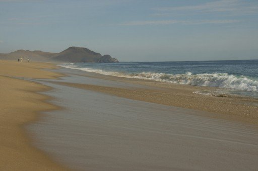 Playa Punta Lobos -California-
