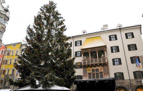 Innsbruck Tettuccio D'Oro