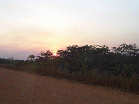 tramonto sulla foresta