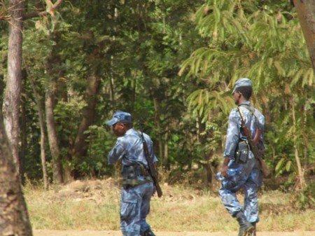 i soldati nella foresta