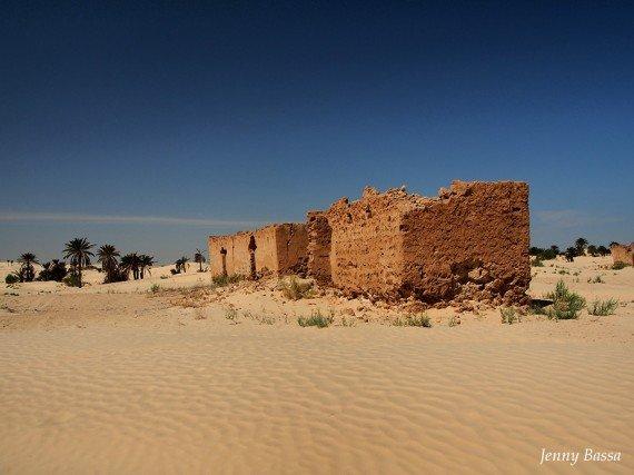 Pre-Grand Erg, Tunisia