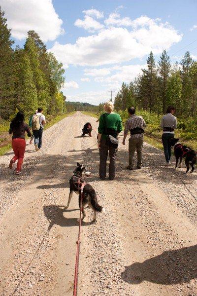 FINLANDIA blog tour-30