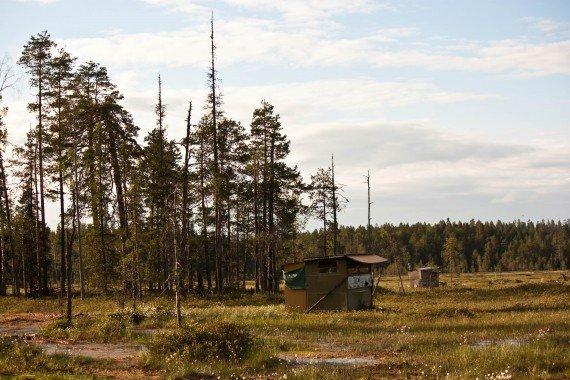 FINLANDIA blog tour-45