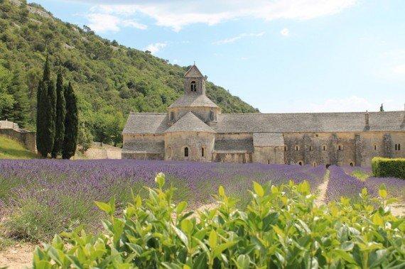 Abbaye Sénanque Provenza Francia