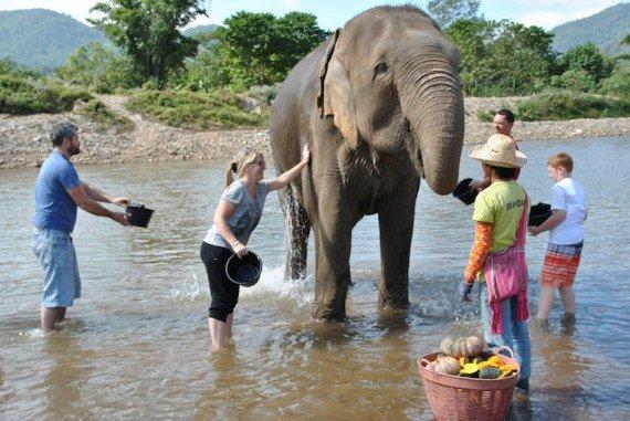 Elephant Nature Park esperienza con gli elefanti in Tailandia