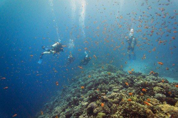 Dahab, Egitto immersioni Mar Rosso
