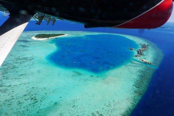 Maldive Timo Newton-Syms