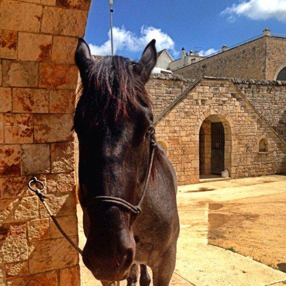 itinerario in Puglia