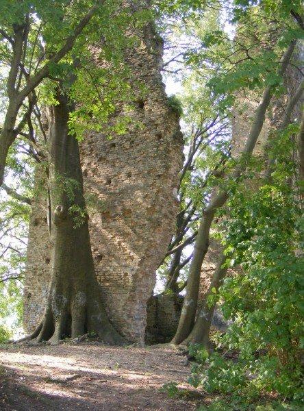 La Torre di Rai, provincia di Treviso