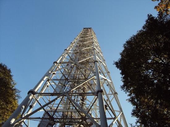 torre branca, cosa vedere a Milano