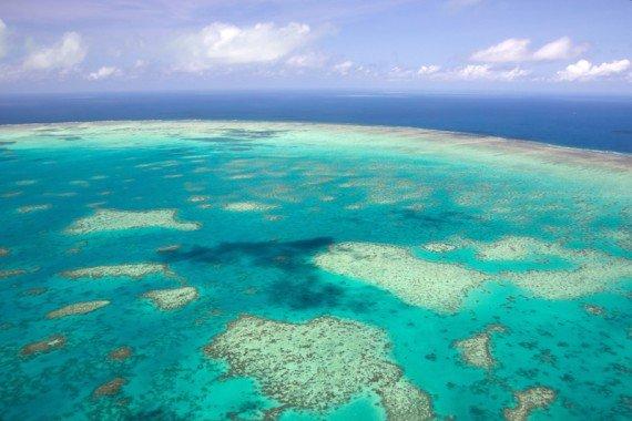 grande barriera corallina australia shutterstock_130509929