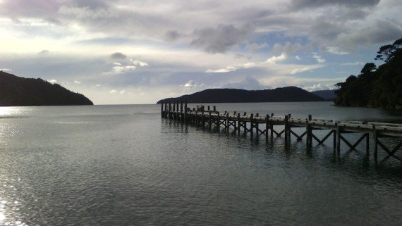 trekking Queen Charlotte - sentieri della Nuova Zelanda