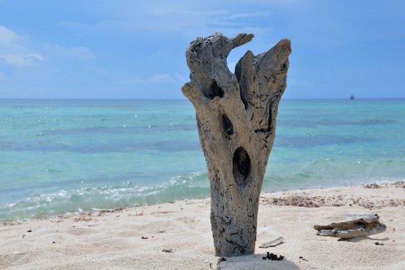 Playa Palancar Cozumel viaggio in Messico