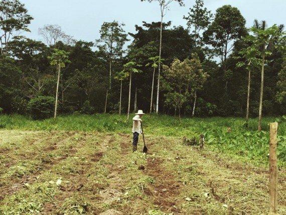Vita contadina- Mocoa - Colombia