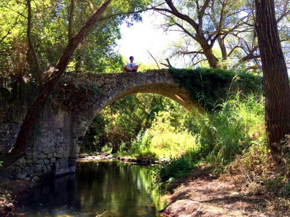 ponte-chris