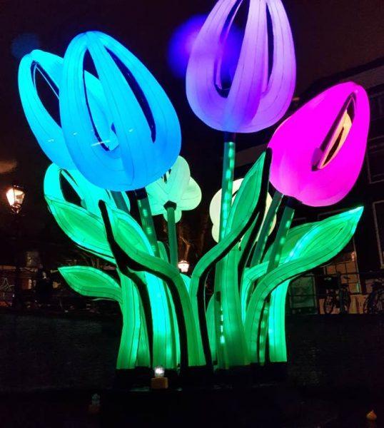 fiori amsterdam