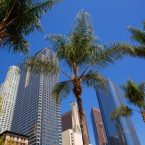 Los Angeles come visitarla
