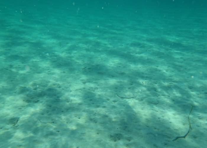 Spiaggia Girin, Isola di San Pietro