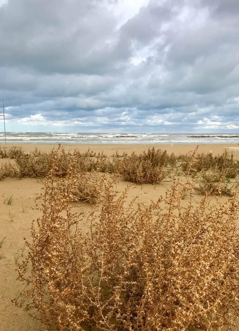 Senigallia spiaggia