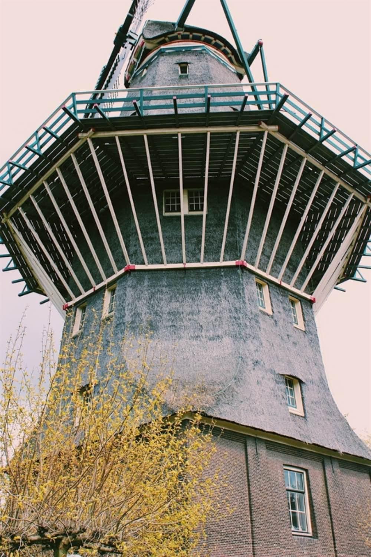 Mulino Amsterdam Ristorante