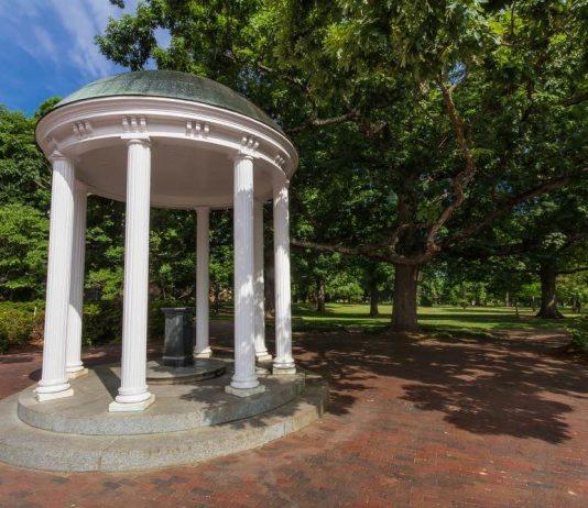 Foto di Bryan Pollard (shutterstock.com)