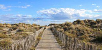 Spiaggia di Espiguette, passerella tra le dune incontaminate. foto di Shutterstock scattata da Picturereflex