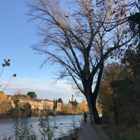 Passeggiata lungo il Brenta sponda sinistra bassano del grappa