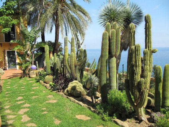 Giardino esotico Pallanca cosa vedere a bordighiera