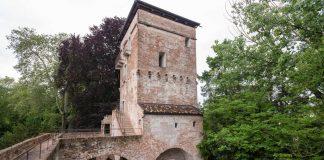 Massimago Wine Tower